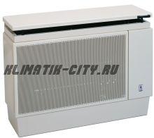Газовый конвектор FEG EURO F 8.50 CP (дымоходный)