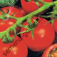 """Томат сорт """"ФИЛИППОС Ф1"""" (Philippos F1) 10 семян"""