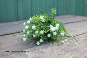 Трава с белыми цветами