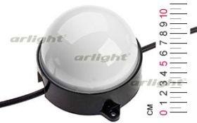 Модуль светодиодный RGB SMD5050 12LED  24V IP67