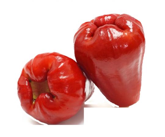 Яблоко Ява