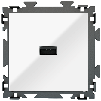 "Розетка USB белая CGSS ""Практика"" PL-W201U-WCG"