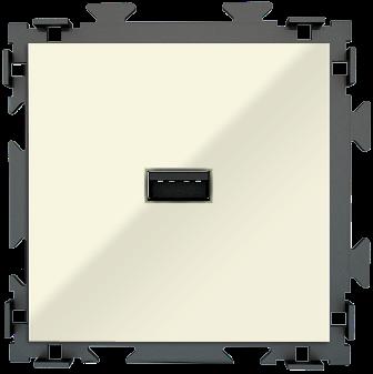 "Розетка USB бежевая CGSS ""Практика"" PL-W201U-BGG"