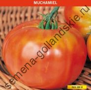 """Томат """"МУЧАМИЭЛЬ"""" (Muchamiel) 10 семян"""