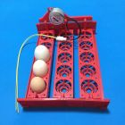 Лоток на 15 яиц.