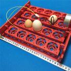 Лоток для инкубатора на 20 яиц.