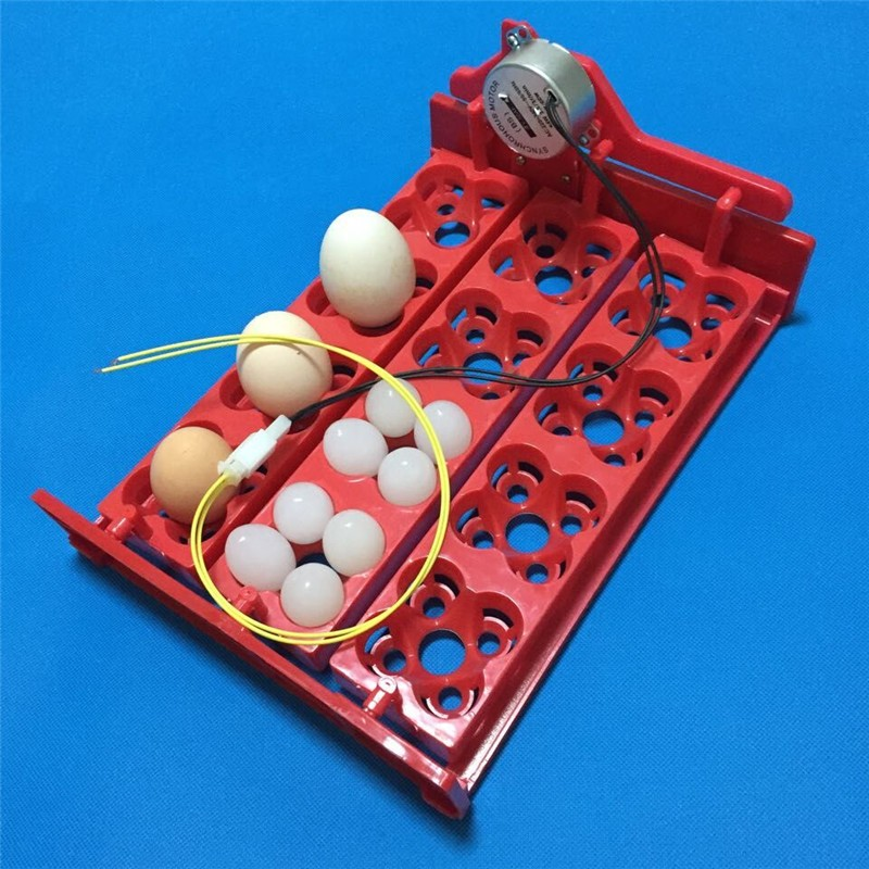 Лоток для инкубатора 12 куриных или 48 перепелиных яйца.