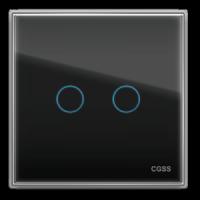 Двухлинейная панель стеклянная черная CGSS WT-P02B