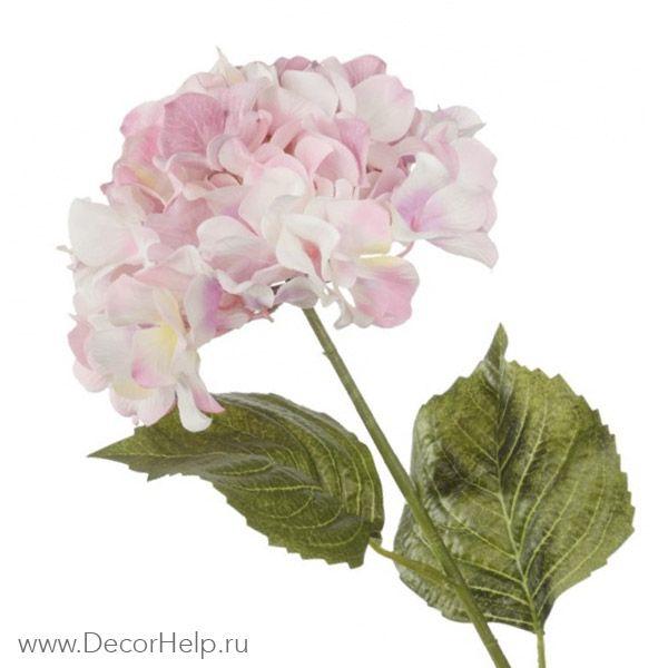 Гортензия розовая (10шт) арт: DCH003