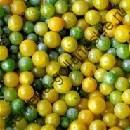 """Томат """"КРЫЖОВНИК"""" (Solanum spontaneum) 10 семян"""
