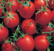 "Томат ""ДЭВИС 82"" (Davis U.C. 82) 10 семян"
