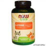 L-Lysine  порошок для кошек  226,8 гр. - примерно 900 доз по 250 мг. лизина