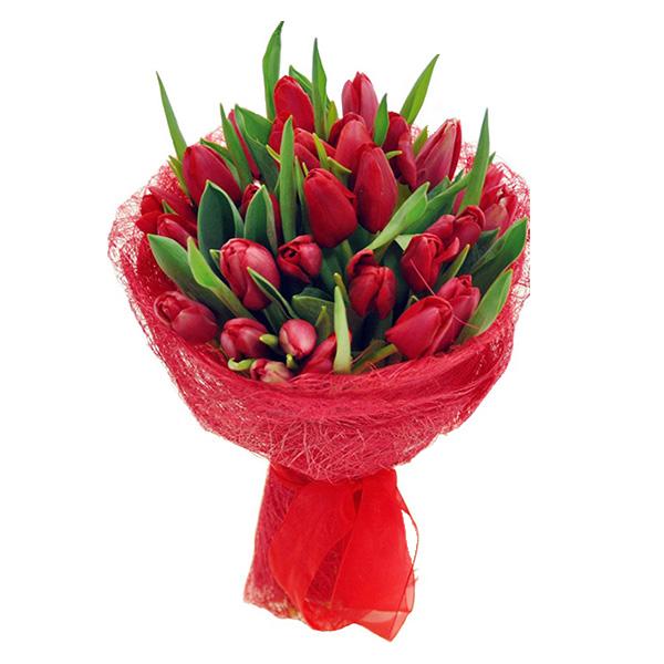 Красный букет 27 тюльпанов