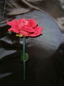 Фокус - роза из факела
