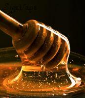 Honey Flavor. Объем 5 мл.