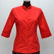 Блуза 242В
