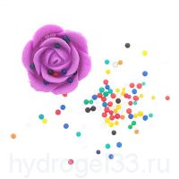 растущая роза с гидрогелем