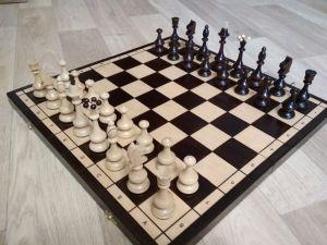 Шахматы №166