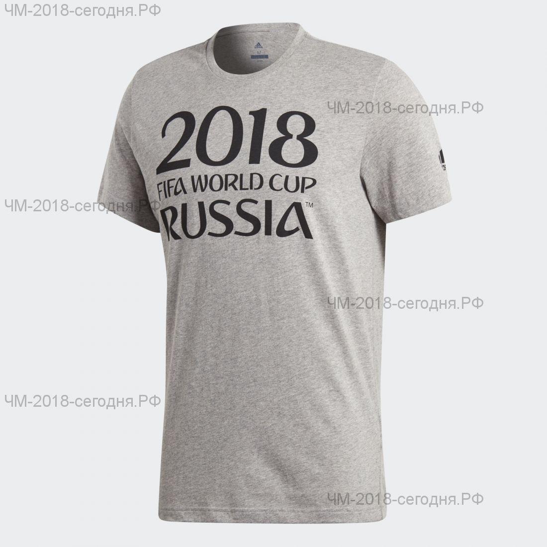 Футболка с принтом мужская FIFA 2018 серая, размер S