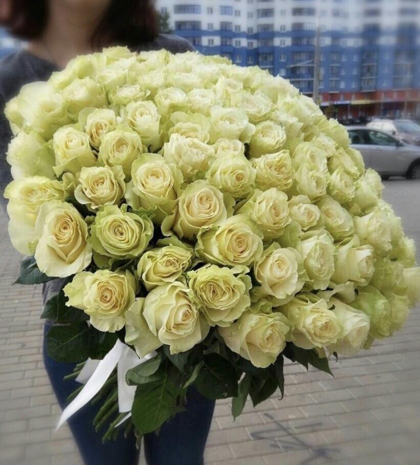 75 роз Мондиаль