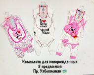 Набор для младенцев 6-12мес №BN555-1