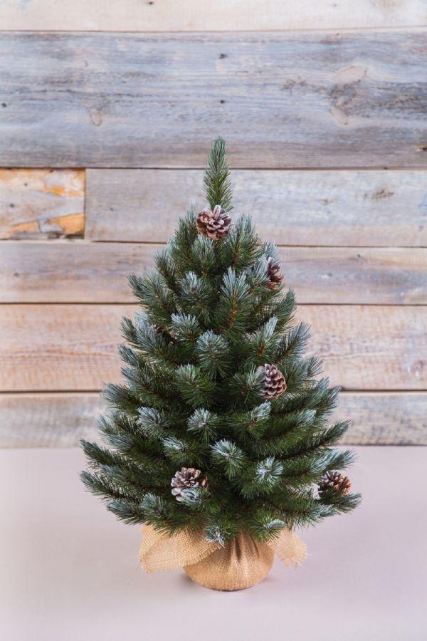 Искусственная елка Женева с шишками 60 см в мешочке заснеженная
