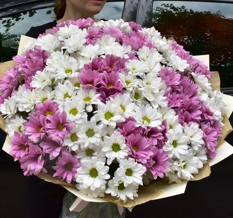Букет из 19 белых и розовых хризантем