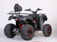 MOTAX ATV Grizlik 200 сс вид 4