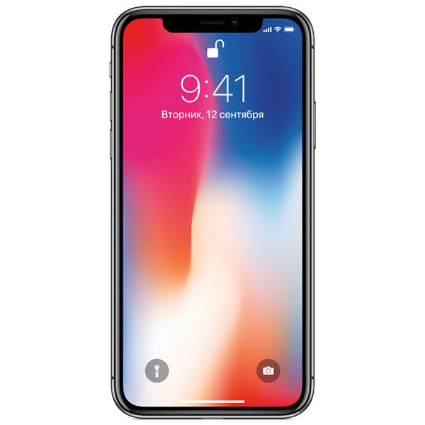 Смартфон CLEVERCEL APPLE iPhone X 256Gb, серый космос