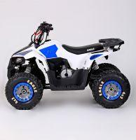 Motoland Eagle 110 сс Квадроцикл бензиновый фото 2