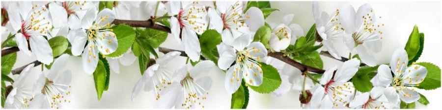 Кухонный фартук AG 05 - Цветущий сад №2 цветы