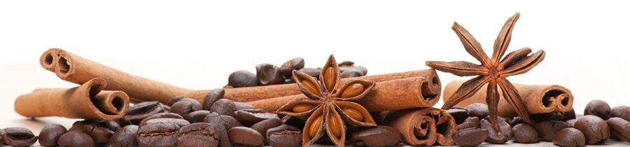 Кухонный фартук BS 42 - Корица и кофе