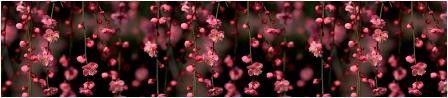 Кухонный фартук BS 49-Висячие сады цветы