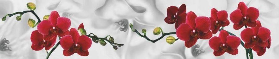 Кухонный фартук ТОР 42 - Красные орхидеи