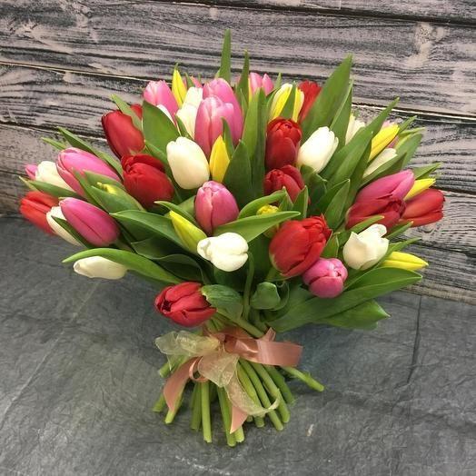 51 яркий красивый тюльпан