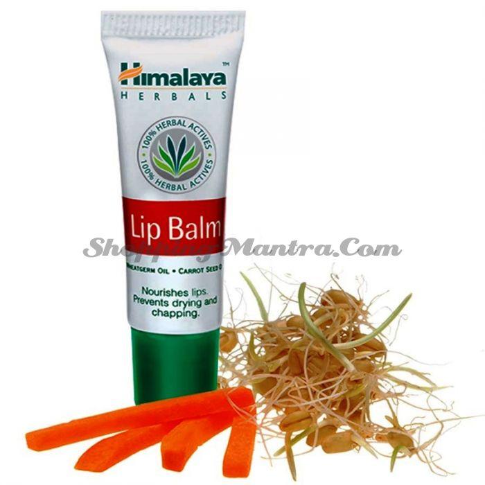 Бальзам для губ Хималая / Himalaya Lip Balm