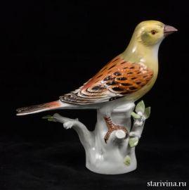 Птица, Meissen, Германия