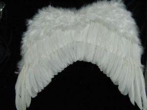 Крылья Ангела перьевые 46*46 бел.(4950)