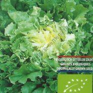 "Эндивий  сорт  ""НЮАНС"" (Andijvie Nuance BIO)    0.4 гр.   250 семян"