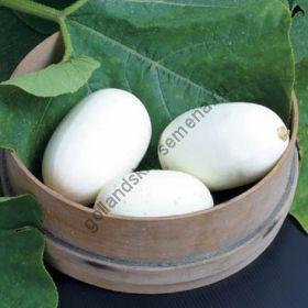 """Тыква  сорт  """"ЯЙЦА В ГНЕЗДЕ""""   (Nest Egg)   1.5 гр.  семян"""