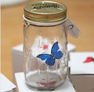 Порхающая бабочка в банке