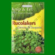 Проростки  РУККОЛА   (Rucolakers)  25 грамм