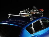 """Багажник для лыж и сноубордов - крепление """"Атлант"""" для 6 пар лыж / 4 сноубордов"""