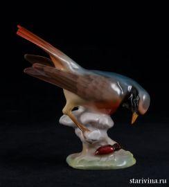 Птица горихвостка с жуком, Hutschenreuther, Германия