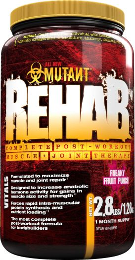 Fit Foods - Rehab