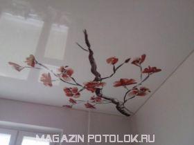 Фотопечать на глянцевом натяжном потолке
