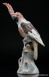 Попугай какаду, Франция, 19 в., артикул 00807