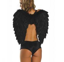 Крылья Ангела (Черные)  60х80 см