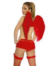 Крылья Ангела 80х55 Красные