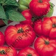 """Томат сорт  """"МАРМАНДЕ"""" (Marmande) 10 семян"""